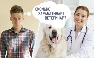 Сколько получает ветеринар