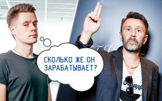 Сколько зарабатывает Сергей Шнуров на имидже бунтаря